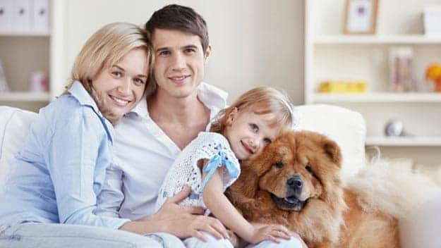 Wills & Trusts dog-young-family Direct Wills Basingstoke